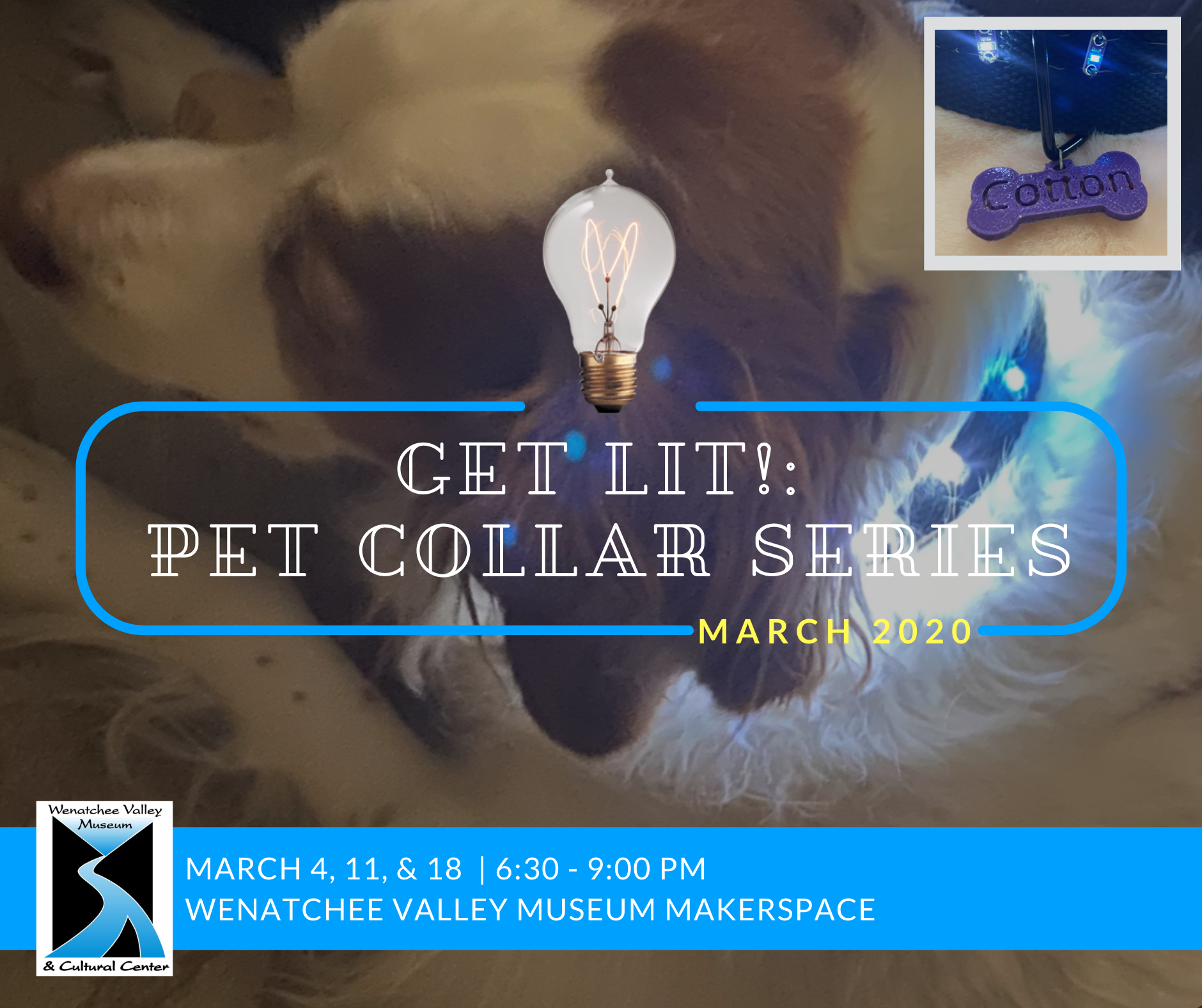 Join us for a Get Lit! Pet Collar series