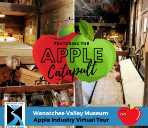 Apple Industry Virtual Tour