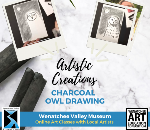 Charcoal Owl Drawing