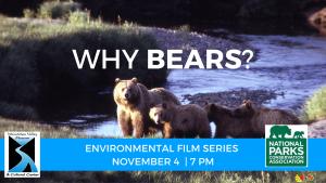 WHY BEARS?